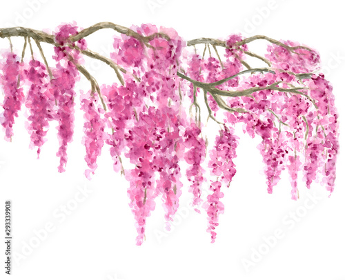 Foto Pink Cherry Blossom tree border watercolor painting hand drawn on isolated white
