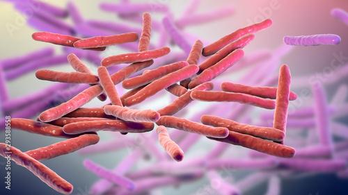 Fotografia Mycobacterium leprae bacteria, the causative agent of leprosy, 3D illustration