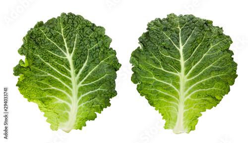 Obraz na płótnie savoy cabbage