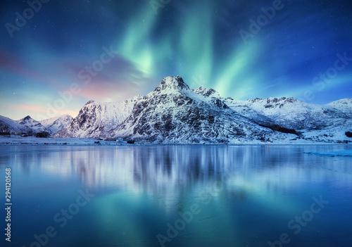 Leinwand Poster Aurora Borealis, Lofoten islands, Norway