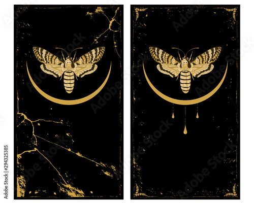 Fotografiet set of backgrounds with butterfly death head hawk and moon in gold and black col