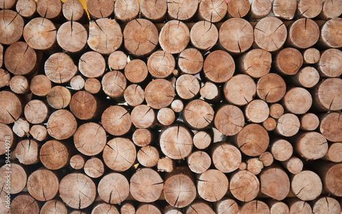Fototapeta Pile of wood logs stumps for winter