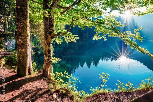 Fotografie, Obraz Stunning summer view of Fusine lake