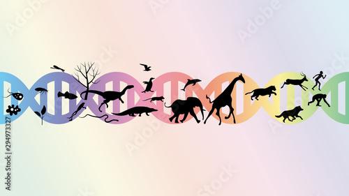 Obraz na plátne Evolution abstract illustration vector design.