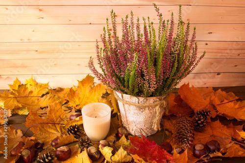 Kompozycja wrzos ze świeczką na jesiennych liściach