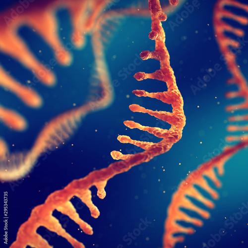 Fotografía Single strand ribonucleic acid, RNA and molecular biology research