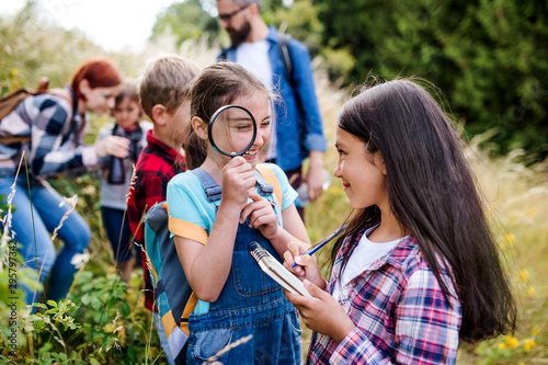 Stampa su Tela Group of school children with teacher on field trip in nature, learning science
