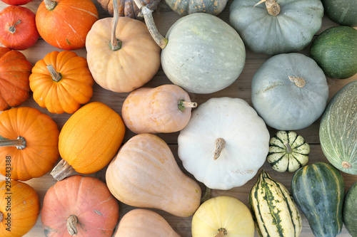 Fotografija Colorful collection of pumpkins and squashes