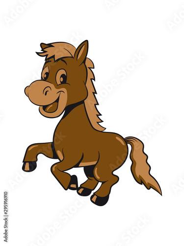 Carta da parati Pony Pferd laufen aufbäumen spass Mädchen jungen süss lieb springen spielen frec
