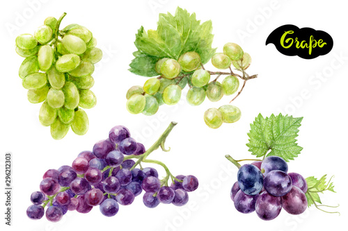 Grape set composition watercolor isolated on white background Fototapet