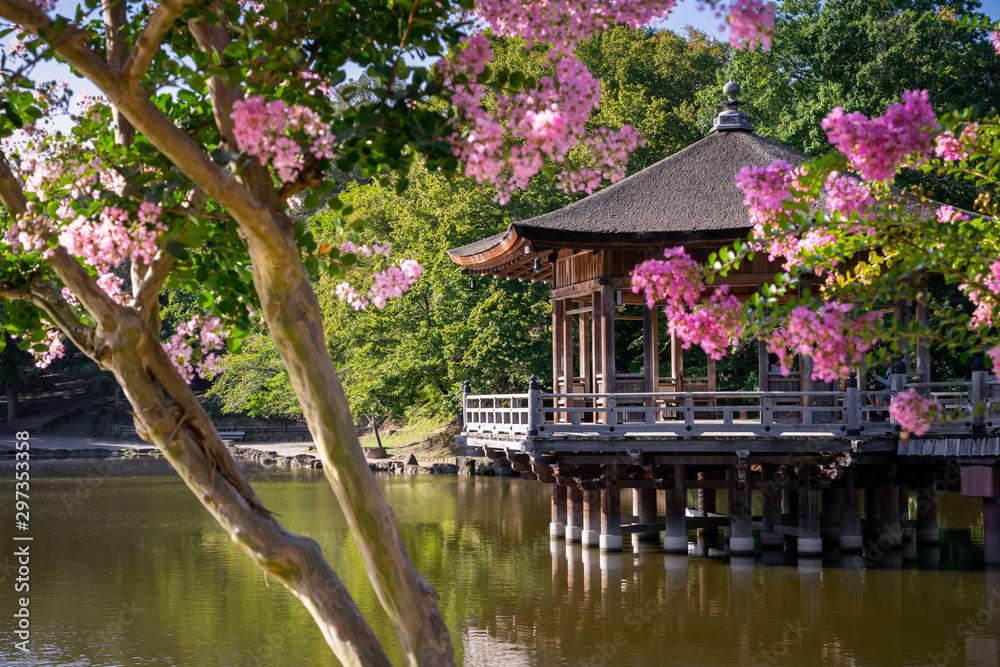 A lake at Nara park, Japan <span>plik: #297353358 | autor: Luxeyes Photographie</span>