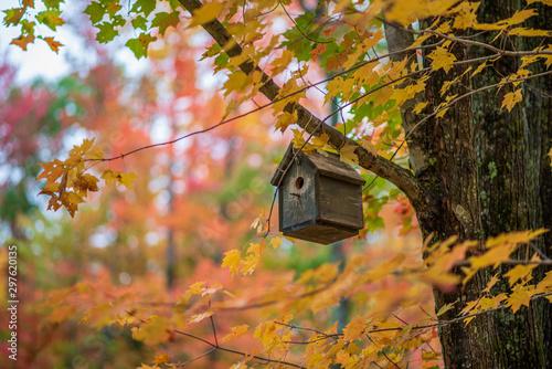 Fotografija Birdhouse Autumn
