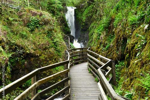 Glenariff Forest Park Antrim Irlandia