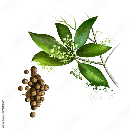 Murais de parede Pile of aromatic allspice isolated on white background