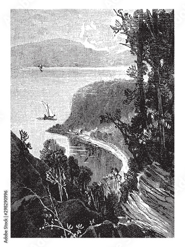 Leinwand Poster Wolfe's Cove,vintage illustration