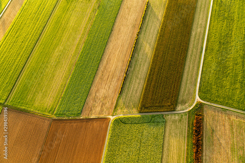 Obraz na plátně Cultivated fields, aerial view from the top