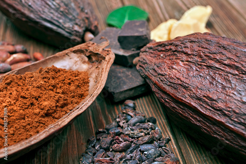 Fotografia Cocoa pods with green leaves, chopped chocolate bar, cocoa butter, cacao powder, heaps of cocoa beans and cocoa nibs on wooden background