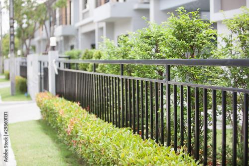Valokuva black fence with green tree