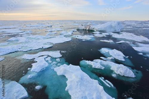 Arctic Ocean in summer time Fototapet