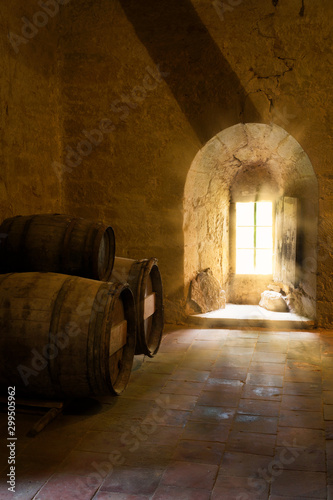 Wine barrels in French medieval castle