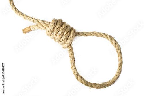 Noose tied in natural Sisal Rope, isolated high key. Fototapeta