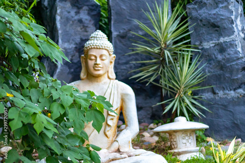 Canvas Print Front view of a Buddha statue with tree branches in the foregound