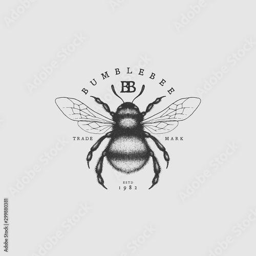 Cuadros en Lienzo Bumblebee vintage label