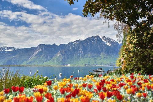 Canvas Print Los alpes desde Montreux