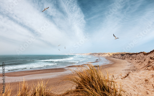 Canvas-taulu Ursprünlicher Strand an der Westküste von Dänemark