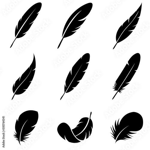 Fotografiet Feather Set icon, logo isolated on white background