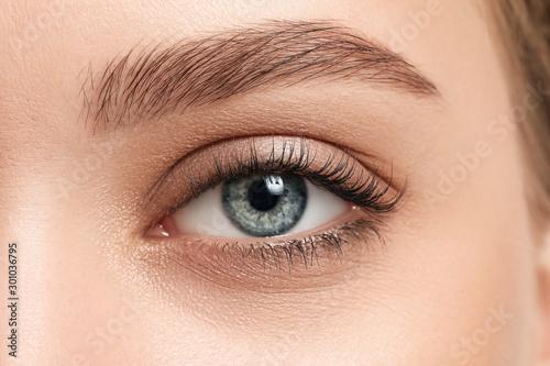 Fotografija Young woman with beautiful eyebrows, closeup