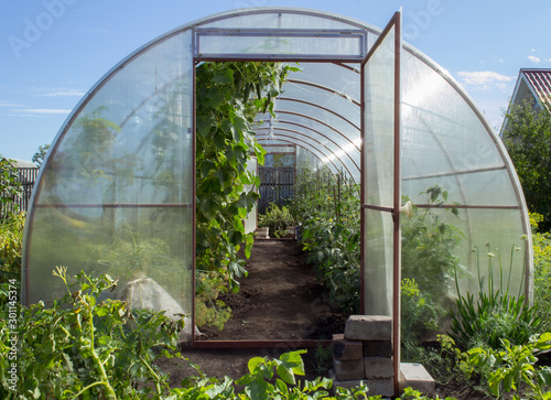 Fotografiet Greenhouse on small farm with plants