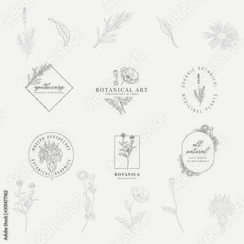 Tablou Canvas Set of 6 botanical logos