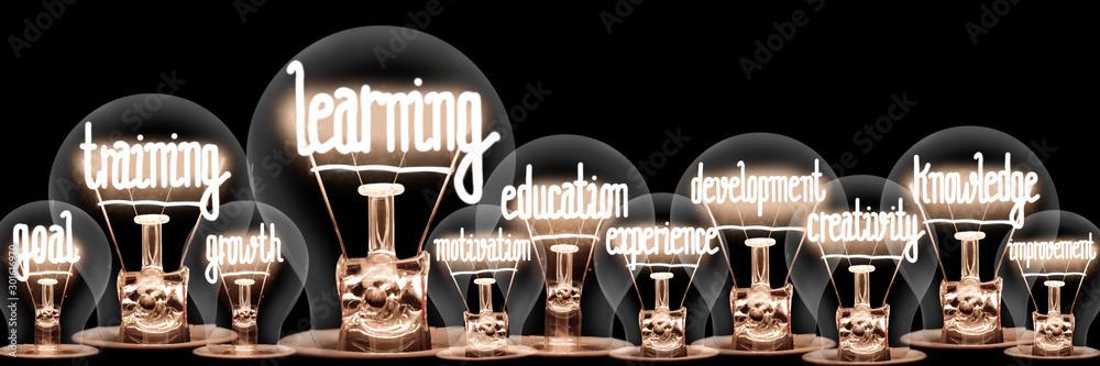 Light Bulbs with Learning Concept <span>plik: #301616970   autor: EtiAmmos</span>