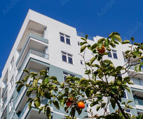 Fotografia Bright orange large persimmon. Residential building. Close-up