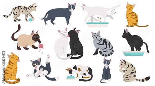 Fotografija Cartoon cat characters collection