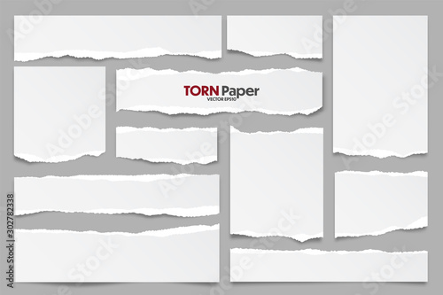 Wall mural White ripped paper strips collection. Realistic paper scraps with torn edges. Sticky notes, shreds of notebook pages. Vector illustration.