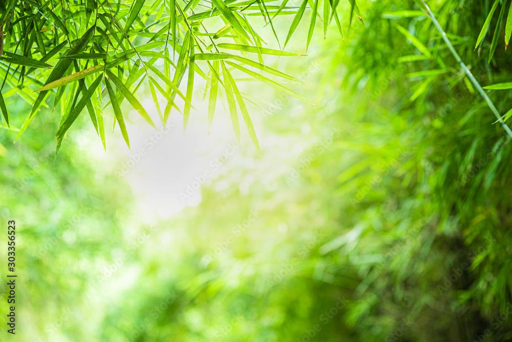 Zbliżenie piękny widok natury zieleni bambusowy liść na greenery zamazywał tło z światła słonecznego i kopii przestrzenią. Jest to wykorzystanie do naturalnego tła letnich ekologii i świeżych tapet. <span>plik: #303356523 | autor: Dilok</span>