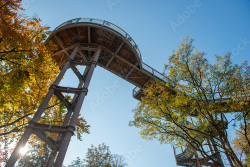 Photo Treetop path through the mixed forest at the Beelitz near Berlin in Germany, view from below to the supports and wooden planks