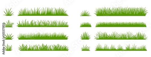 Fotografering Green grass silhouette