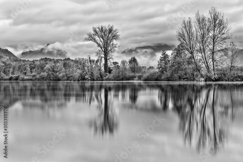 Autumn landscape, black and white photography