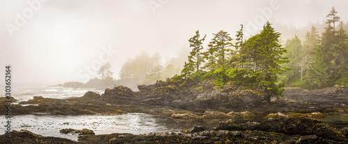 Fotografie, Tablou Misty shoreline of Botany Bay on west coast of Vancouver Island, British Columbia, Canada, with sun beginning to beak through the fog