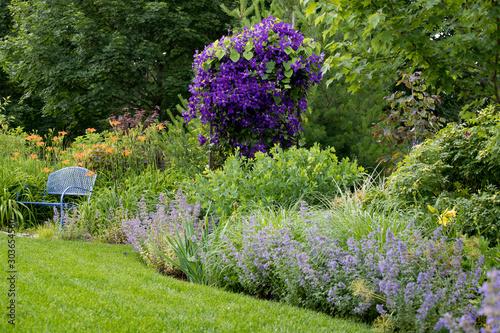 Leinwand Poster An artist's garden - en plein air - beautiful shades of lavender from catmint, r