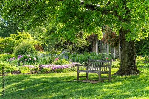 wooden bench at flower garden park Fototapet