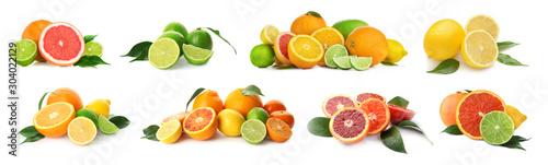 Fotografie, Obraz Different tasty citrus fruits on white background