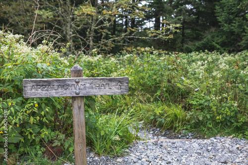 Obraz na płótnie Appalachian Trail at Clingmans Dome