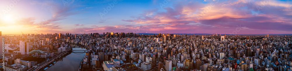 Panorama of central of Tokyo at dawn, Japan