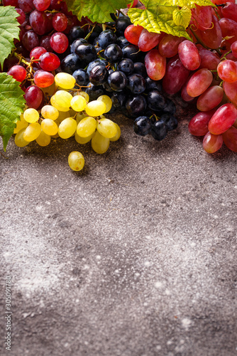 Valokuva Assortment of different sort of grapes