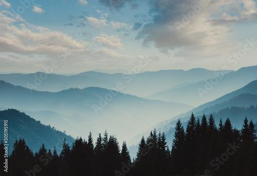 Naklejki na drzwi Mgła na wzgórzach