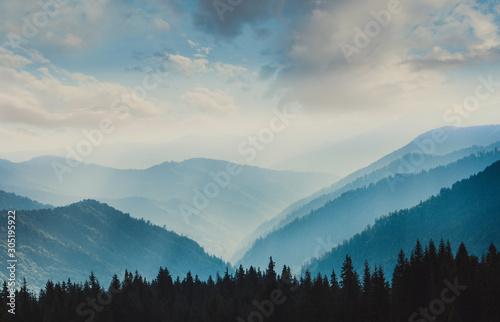 Naklejki na drzwi Krajobraz mglistych gór